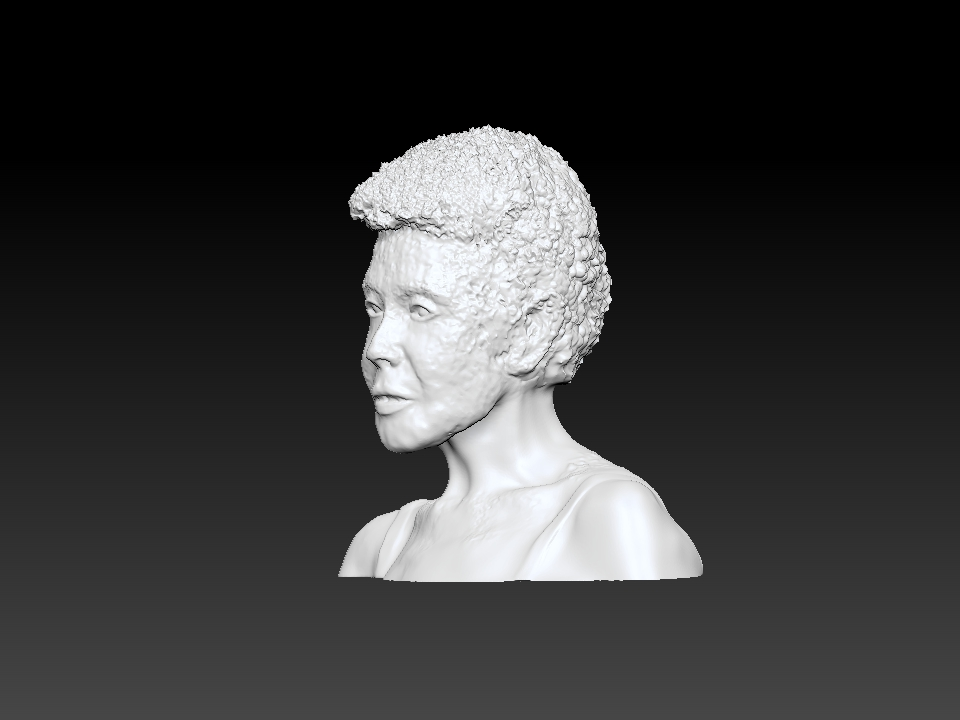 IZABEL LAM 3D SCULPTURE - EVA HALLER BUST 3QUARTER VIEW