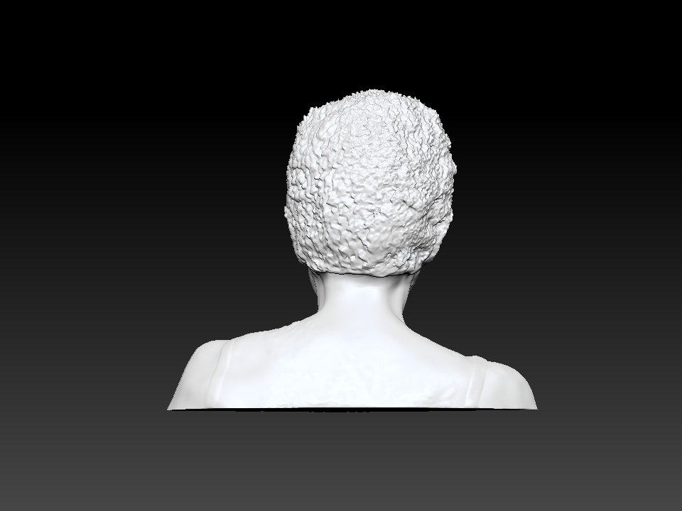 IZABEL LAM 3D SCULPTURE - EVA HALLER BUST BACK VIEW