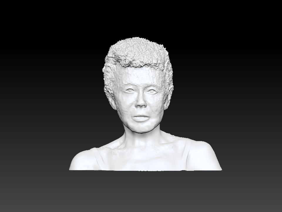 IZABEL LAM 3D SCULPTURE - EVA HALLER BUST FRONT VIEW