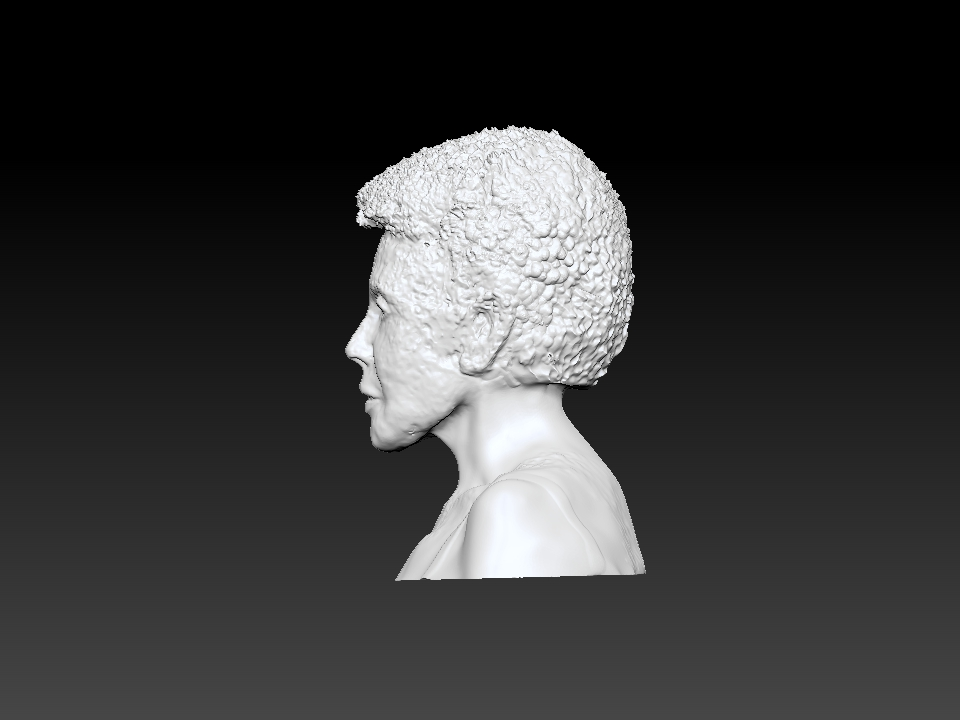IZABEL LAM 3D SCULPTURE - EVA HALLER BUST SIDE VIEW