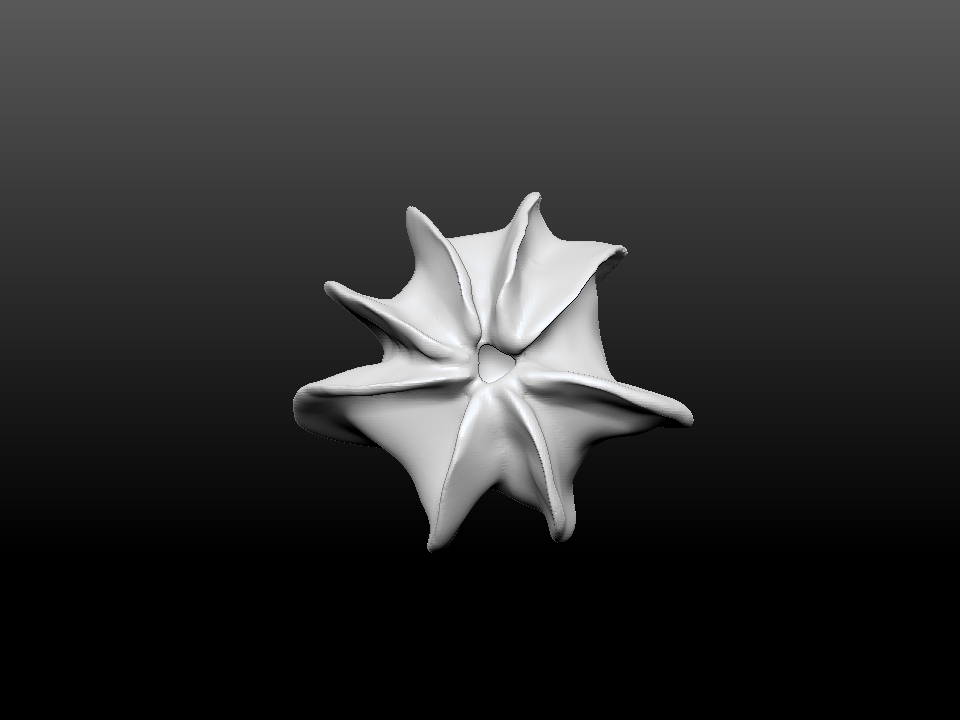 IZABEL LAM CORAL STAR 3D PRINTED VASE TOP VIEW