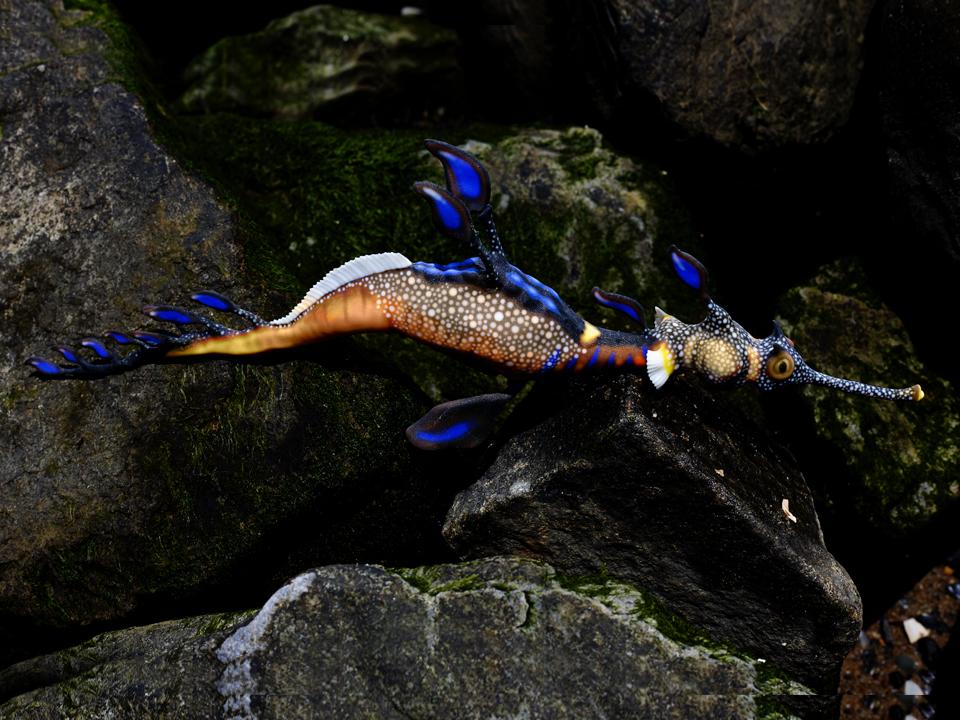 IZABEL LAM DYLAN THE SEA DRAGON SCULPTURE 3D PRINTED